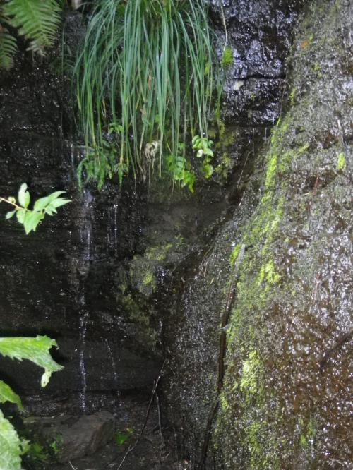 FRP水槽上部の公園用水槽がこの下にある