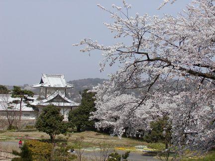 石川門を望む