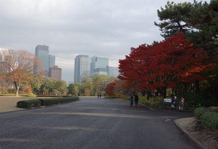 紅葉の木を右に入る