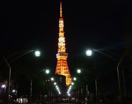 タワー夜景