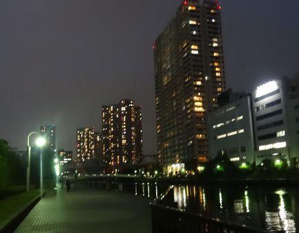 夜の運河沿い
