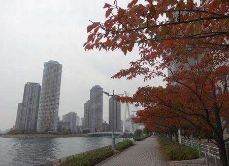 石川島のマンション群