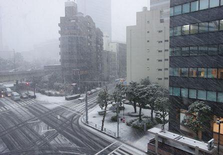 吹雪模様の朝