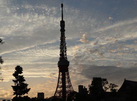 タワー2012.06.13