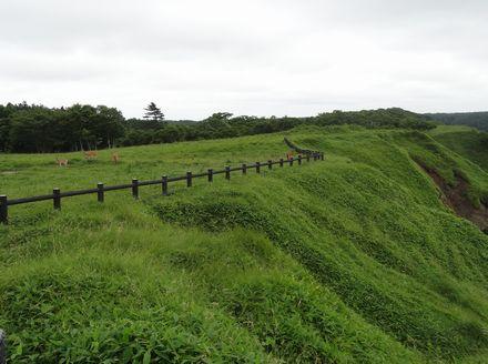 先端部の緑地