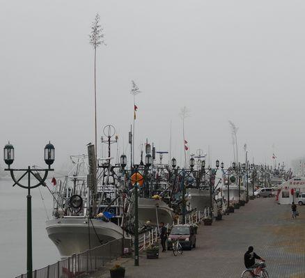 サンマ漁船が停泊
