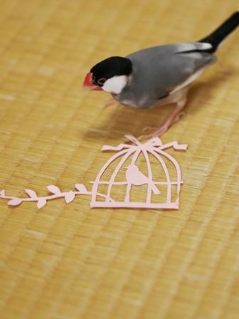 未 鳥かごの切り紙とごま (1)