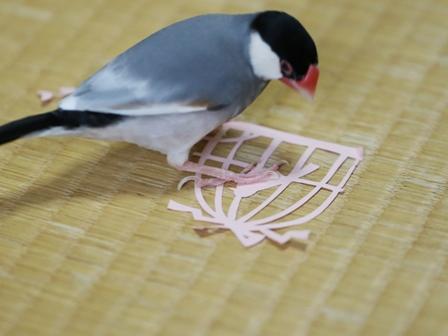 未 鳥かごの切り紙とごま (4)