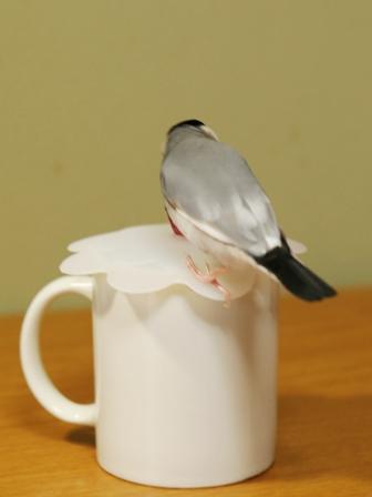 未 ごま カップ マグカップ 蓋 (1)
