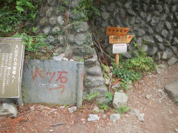 鷹ノ巣山 114