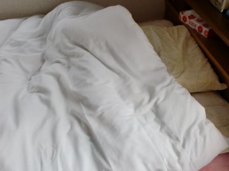 ママの寝床・・・