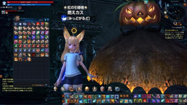 TERA_ScreenShot_20121025_010547.jpg