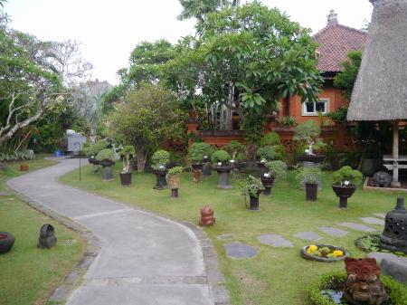 ホテル中庭の盆栽