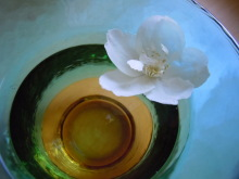 Gooseberryの植木鉢-浮き花