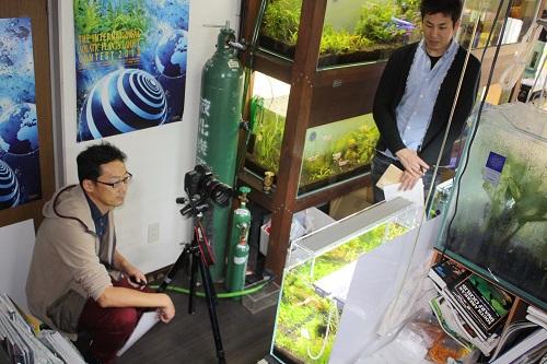 アクアライフ撮影 東海 岐阜 熱帯魚 水草 観葉植物販売 Grow aquarium