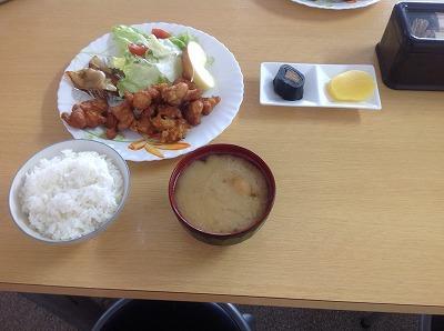 20130316鶏のから揚げ&餃子