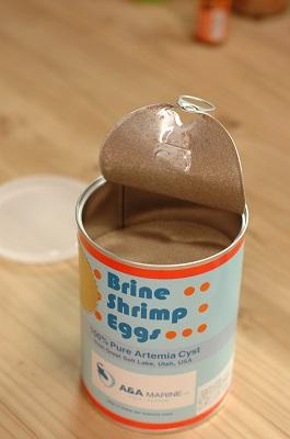 ブライン缶2
