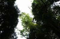 EOS7D 風景