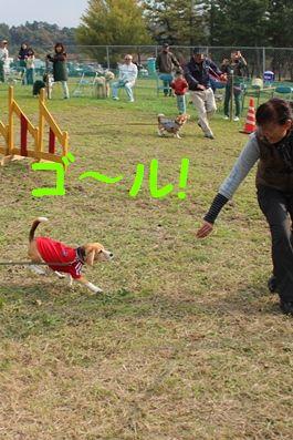 IMG_5690-1.jpg