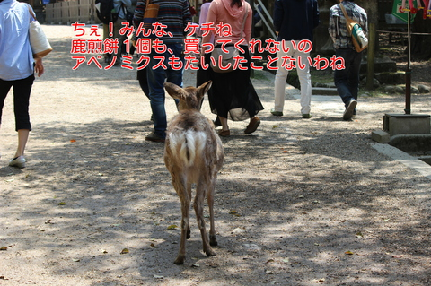 nmFUuUuELiFI__f1368000513_1368000671.jpg