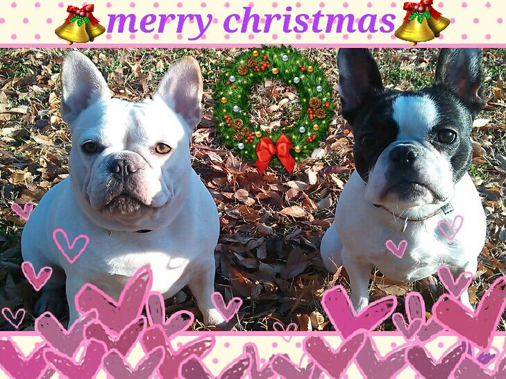 merry christmas2012