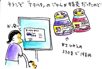 IMG_0001_20121222175723.jpg