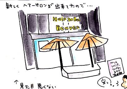 IMG_0002_20121229141532.jpg