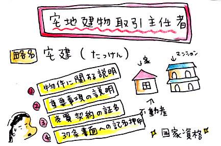 IMG_0003_20130111161010.jpg