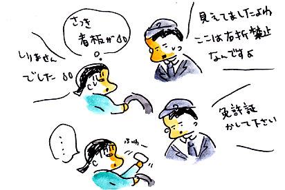 IMG_0006_20121222175850.jpg