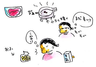 IMG_0011_20121220160330.jpg