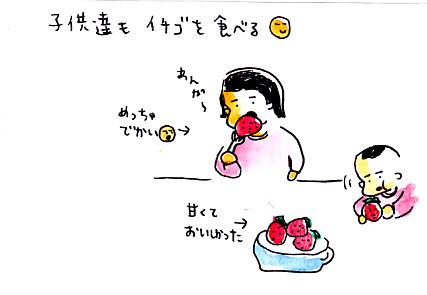 IMG_0016_20130108151218.jpg