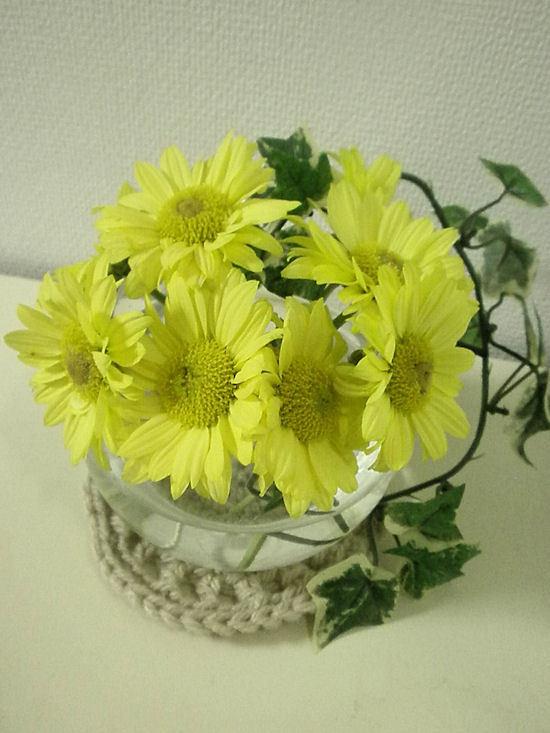 ぽんぽんのほよよんな毎日♪-黄色い花