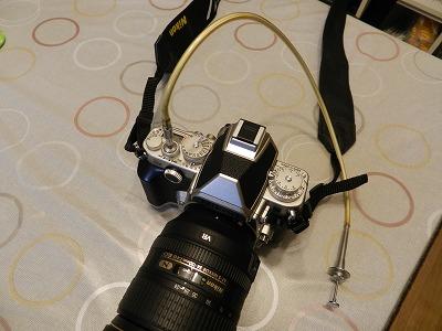s-DSCN4249.jpg
