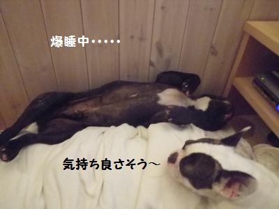 1_20120720120330.jpg