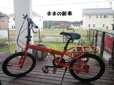 2_20120720120330.jpg