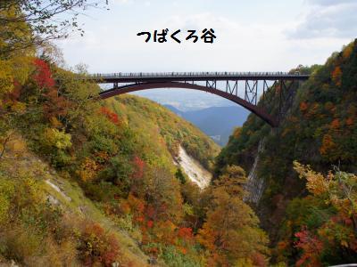 DSC05319_convert_20121021214241.jpg