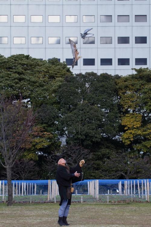 takajyo2013_0061f.jpg