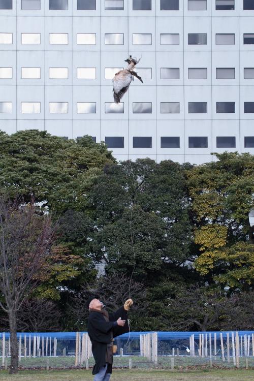 takajyo2013_0062f.jpg