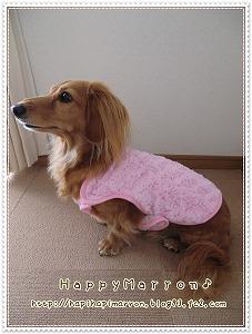 毛布ピンク2