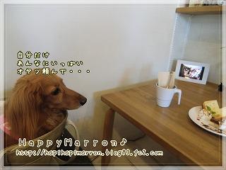 hugscafe-b.jpg