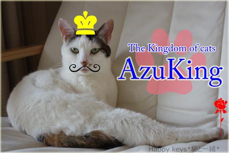 AzuKing