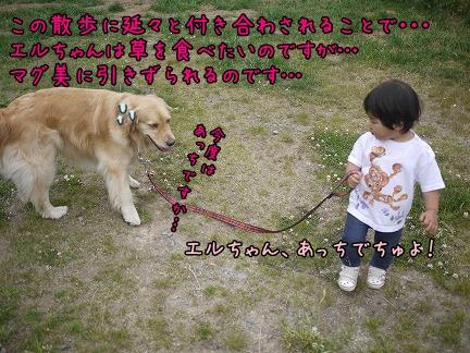 20120705-3.jpg