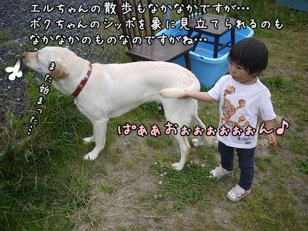 20120705-8.jpg