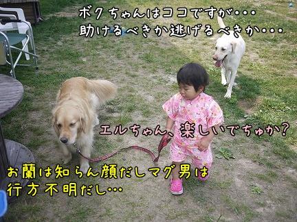 20120707-5.jpg