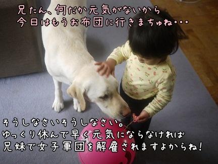 20120712-10.jpg