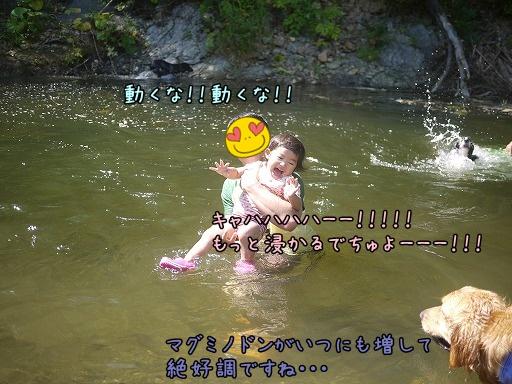 20120913-6.jpg