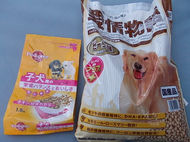 Dogfood 20130122
