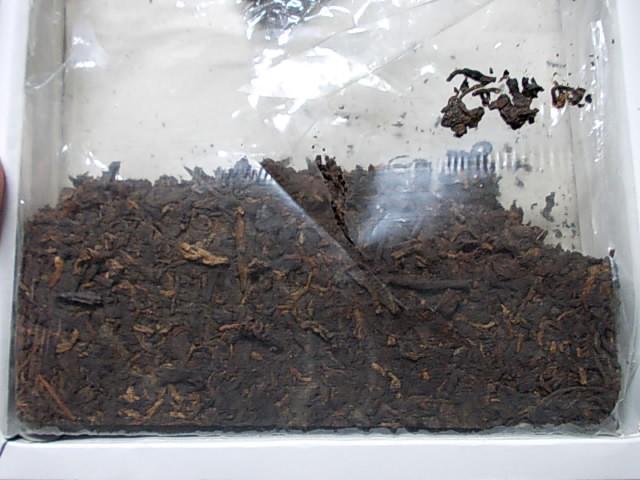 Mongolian tea 20121202