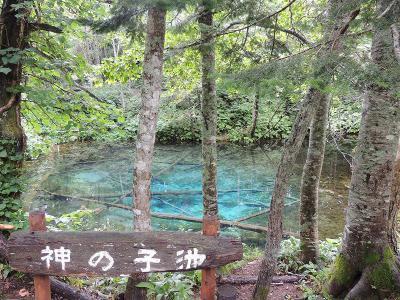 2012_08_10_09_27_37_04.jpg