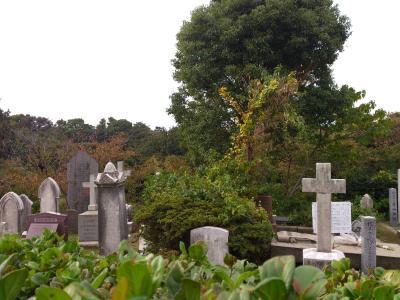 2012-11-03+blog9_convert_20121118144044.jpg